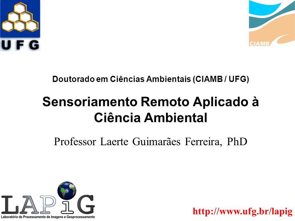 Professor Laerte Guimarães Ferreira, PhD