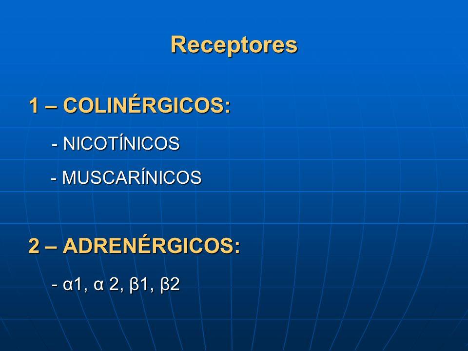 Receptores 1 – COLINÉRGICOS: - NICOTÍNICOS - MUSCARÍNICOS