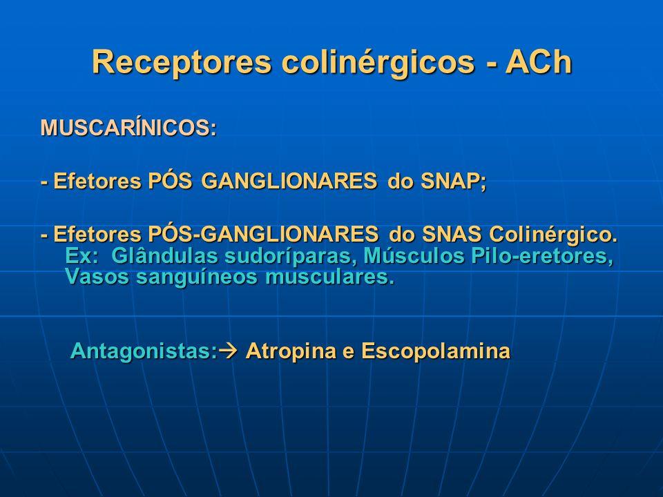 Receptores colinérgicos - ACh