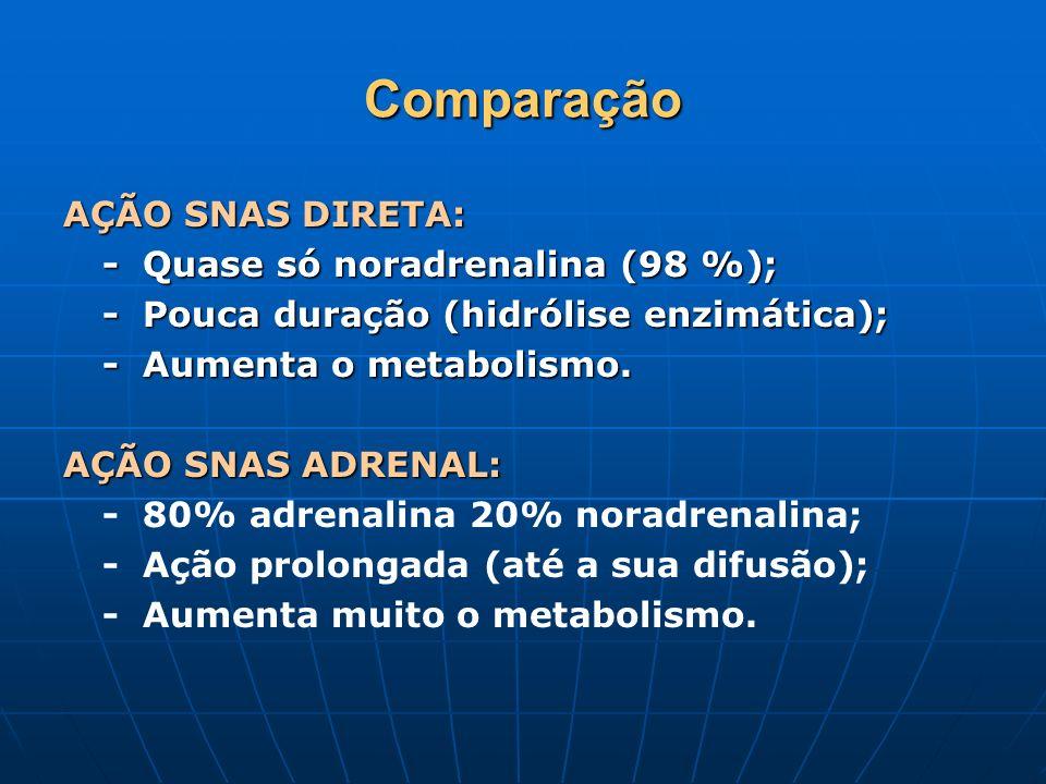 Comparação AÇÃO SNAS DIRETA: - Quase só noradrenalina (98 %); - Pouca duração (hidrólise enzimática); - Aumenta o metabolismo.