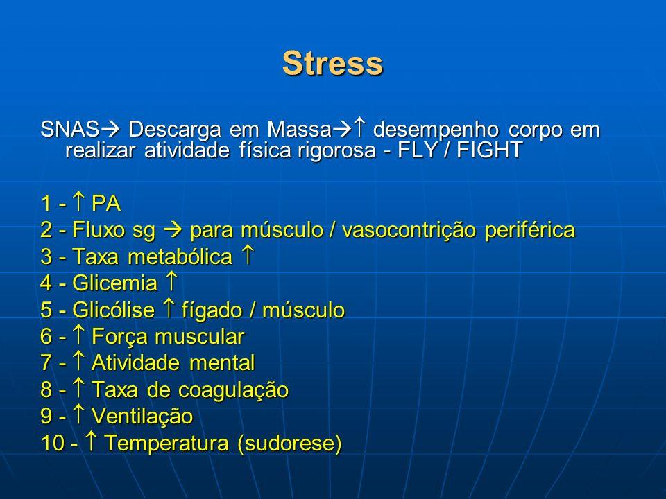 Stress SNAS Descarga em Massa desempenho corpo em realizar atividade física rigorosa - FLY / FIGHT.