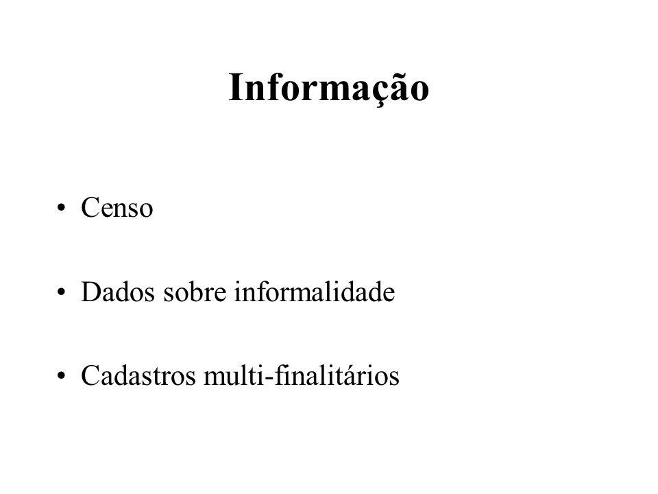 Informação Censo Dados sobre informalidade