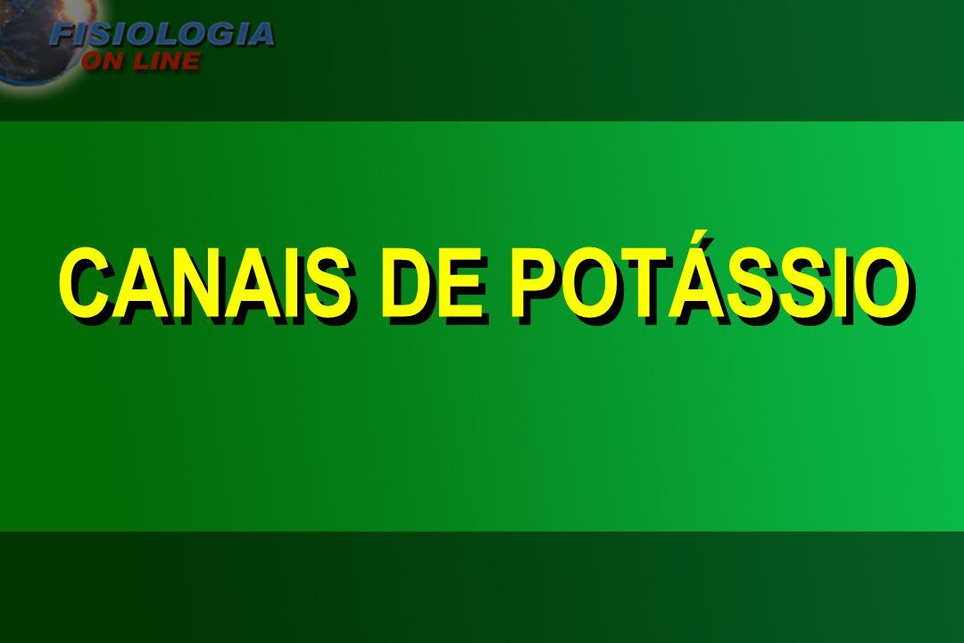 CANAIS DE POTÁSSIO