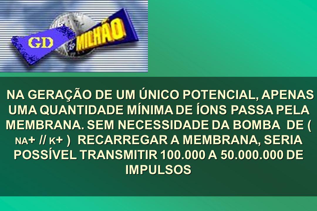 NA GERAÇÃO DE UM ÚNICO POTENCIAL, APENAS UMA QUANTIDADE MÍNIMA DE ÍONS PASSA PELA MEMBRANA.