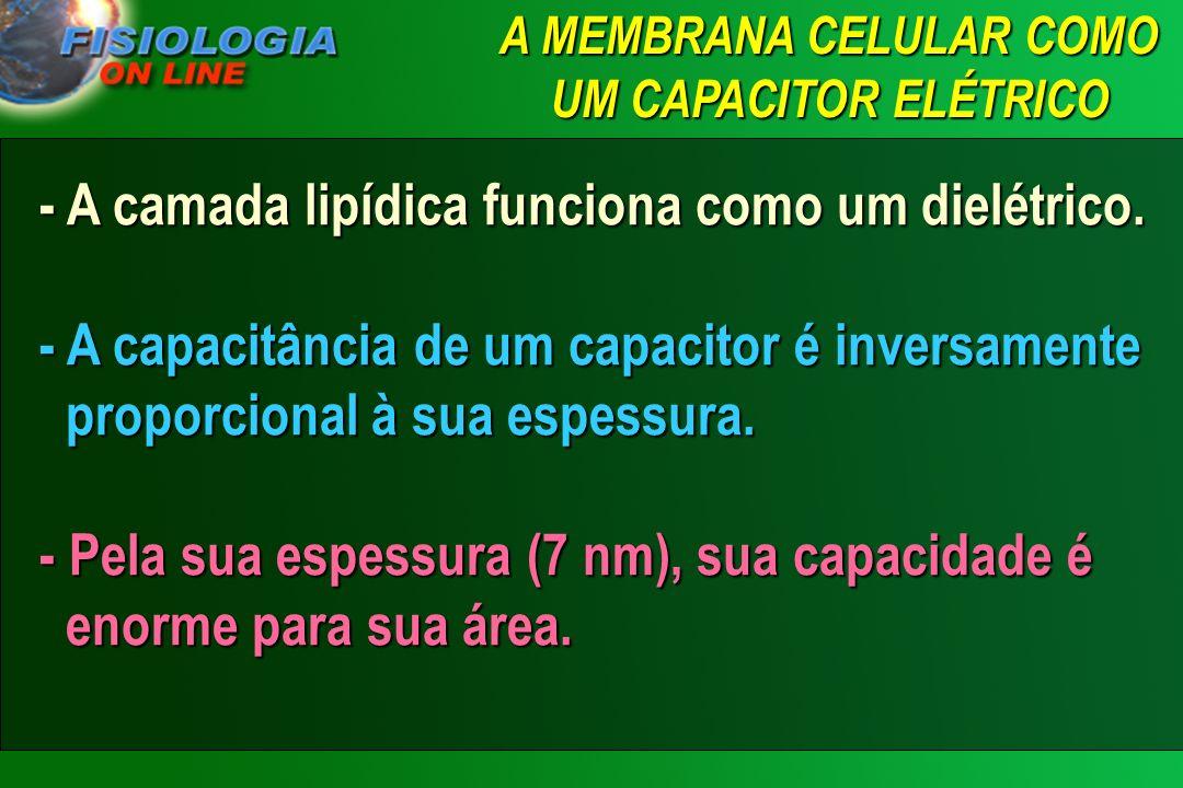 A MEMBRANA CELULAR COMO UM CAPACITOR ELÉTRICO
