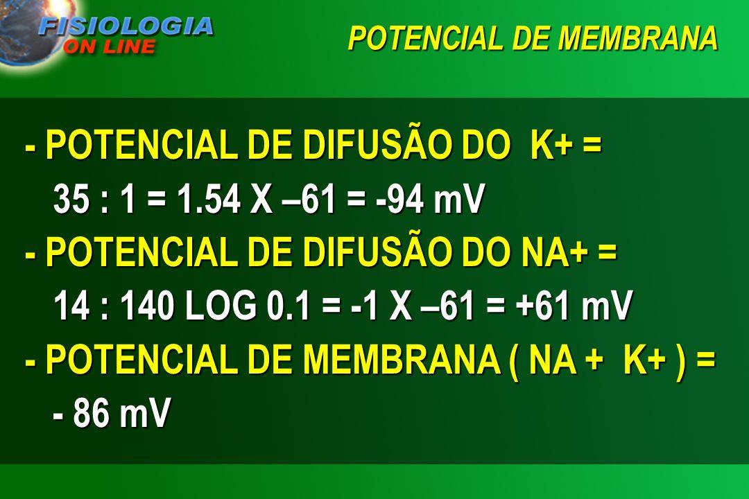 - POTENCIAL DE DIFUSÃO DO K+ = 35 : 1 = 1.54 X –61 = -94 mV