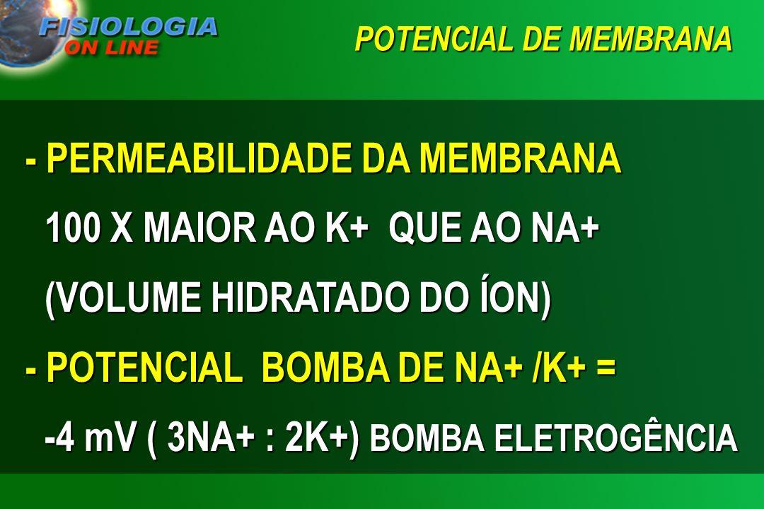 - POTENCIAL BOMBA DE NA+ /K+ = -4 mV ( 3NA+ : 2K+) BOMBA ELETROGÊNCIA