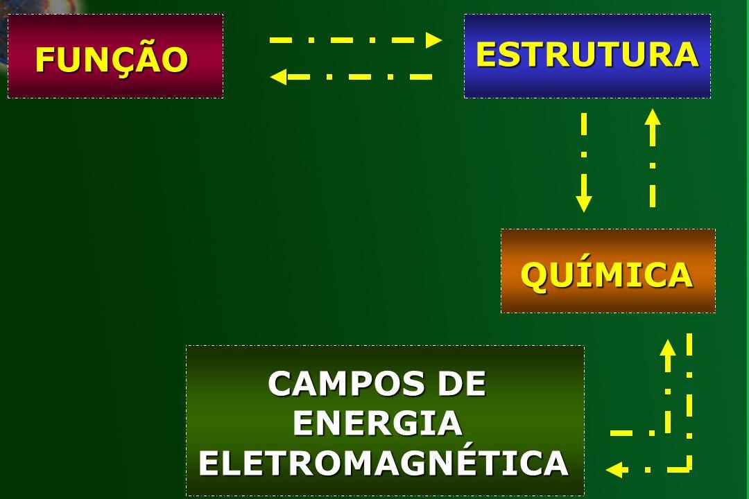 CAMPOS DE ENERGIA ELETROMAGNÉTICA