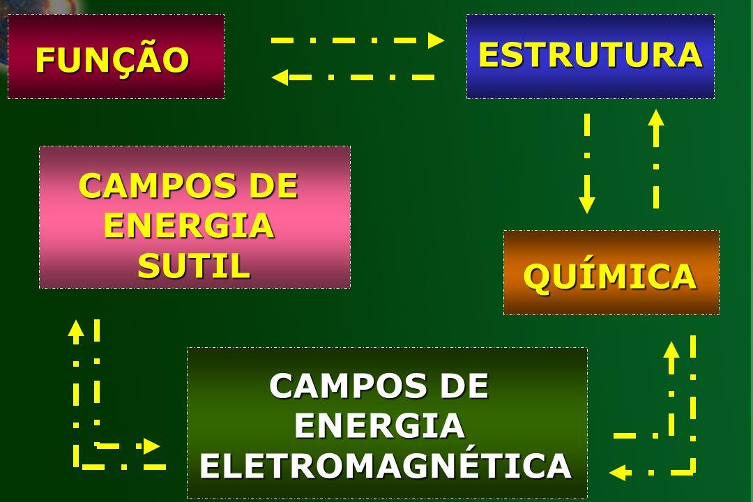 CAMPOS DE ENERGIA SUTIL CAMPOS DE ENERGIA ELETROMAGNÉTICA