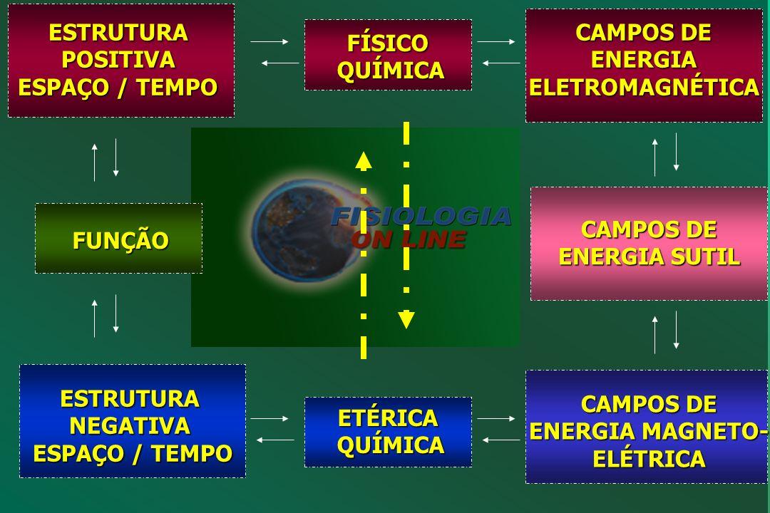 ESTRUTURA POSITIVA ESPAÇO / TEMPO CAMPOS DE ENERGIA ELETROMAGNÉTICA
