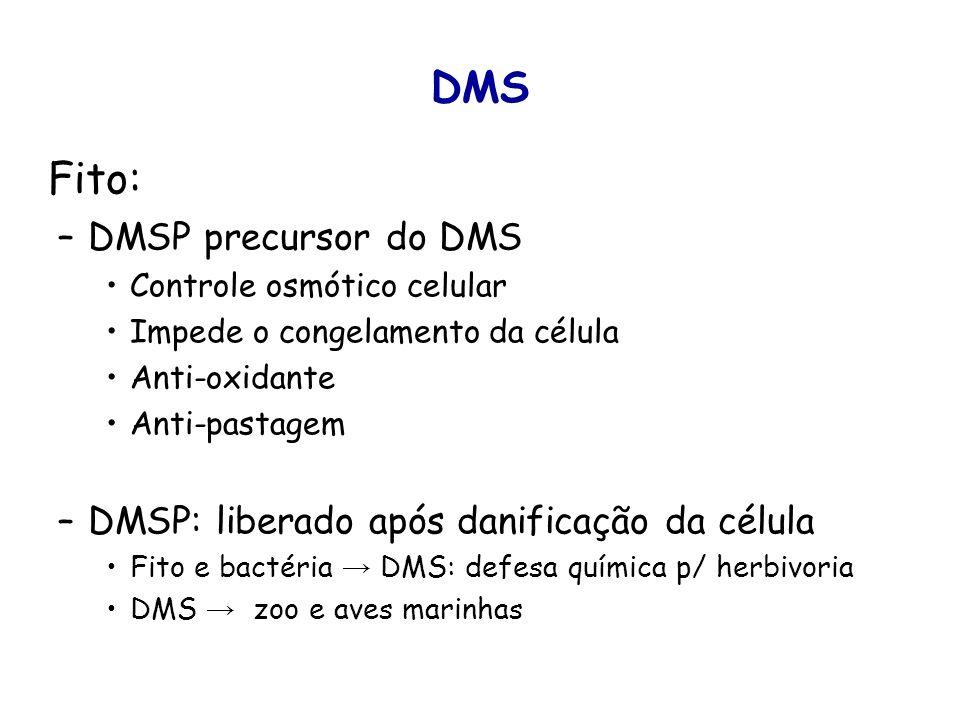 DMS Fito: DMSP precursor do DMS