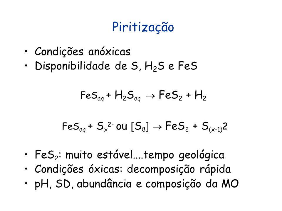 FeSaq + Sx2- ou S8  FeS2 + S(x-1)2