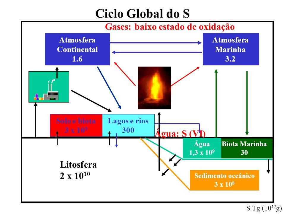 Ciclo Global do S Gases: baixo estado de oxidação Água: S (VI)