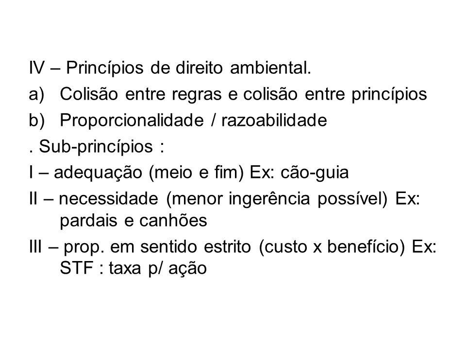 IV – Princípios de direito ambiental.