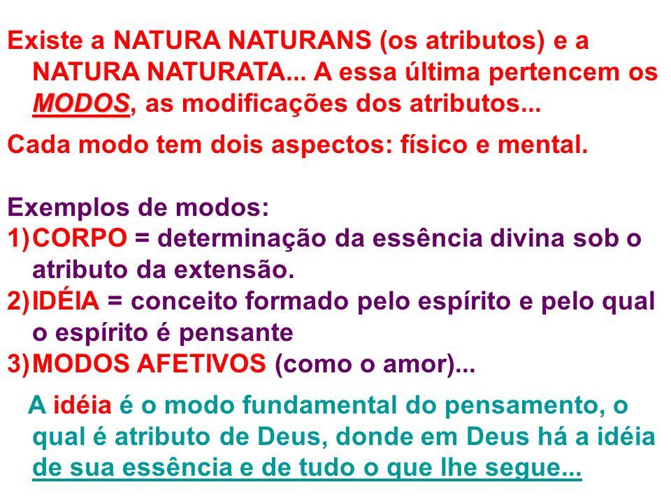 Existe a NATURA NATURANS (os atributos) e a NATURA NATURATA