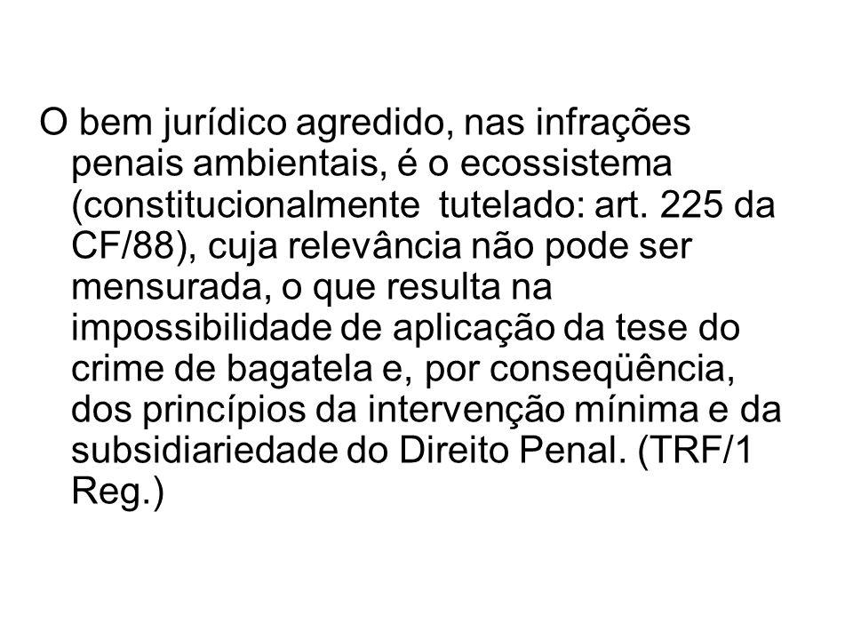O bem jurídico agredido, nas infrações penais ambientais, é o ecossistema (constitucionalmente tutelado: art.