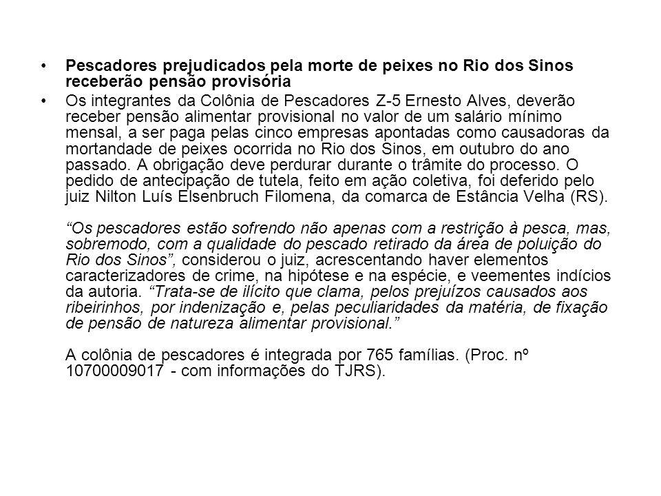 Pescadores prejudicados pela morte de peixes no Rio dos Sinos receberão pensão provisória