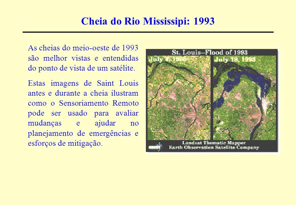 Cheia do Rio Mississipi: 1993