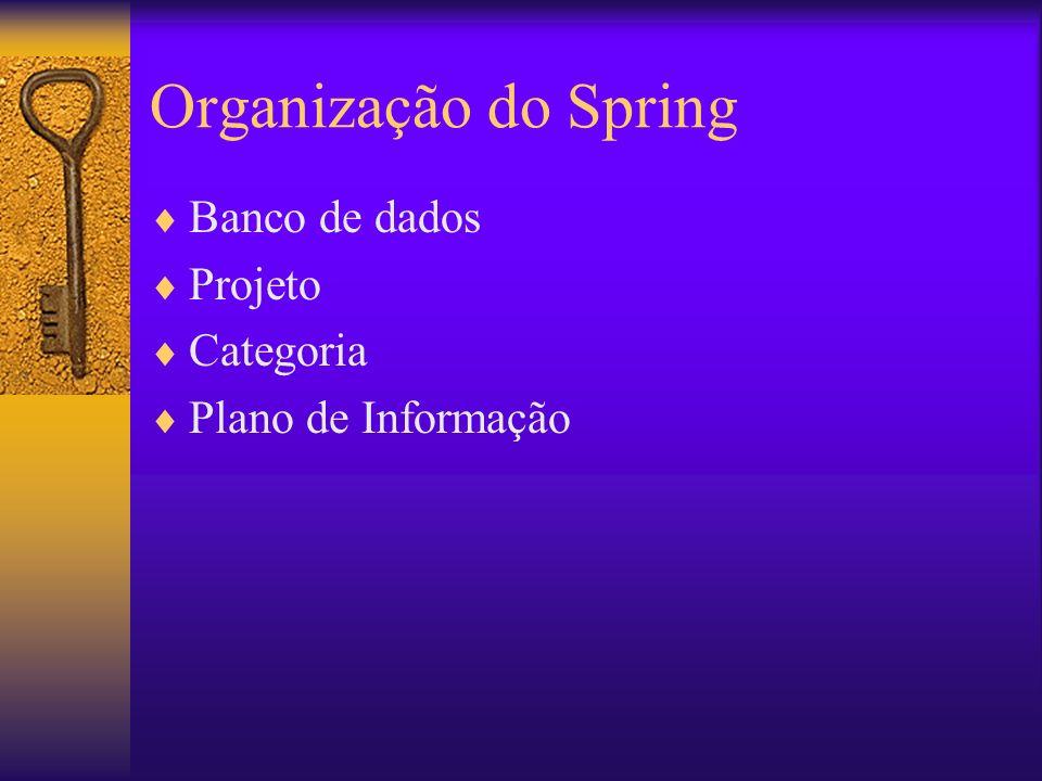 Organização do Spring Banco de dados Projeto Categoria