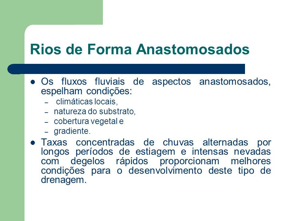 Rios de Forma Anastomosados