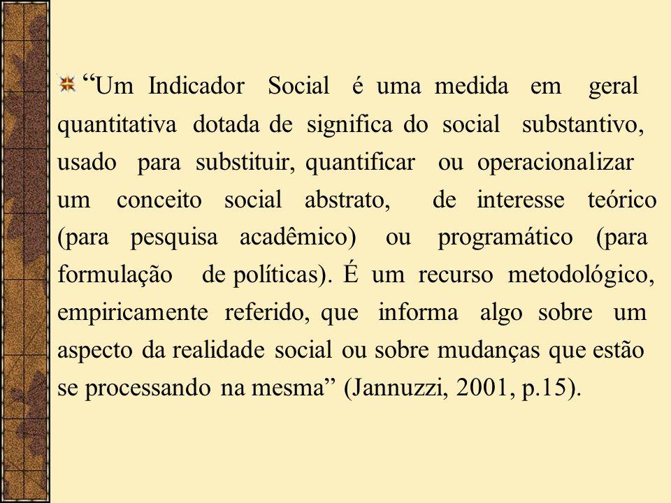 Um Indicador Social é uma medida em geral