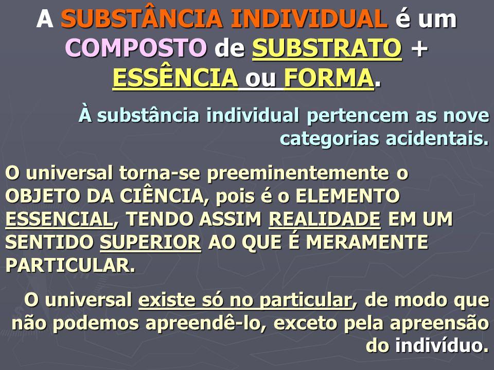 A SUBSTÂNCIA INDIVIDUAL é um COMPOSTO de SUBSTRATO + ESSÊNCIA ou FORMA.