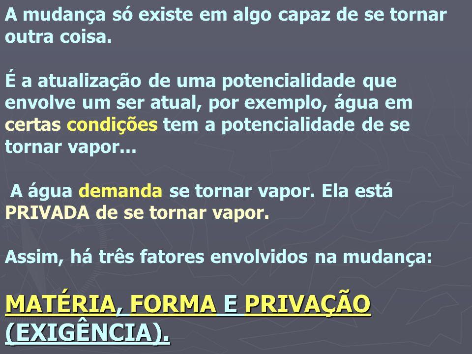 MATÉRIA, FORMA E PRIVAÇÃO (EXIGÊNCIA).
