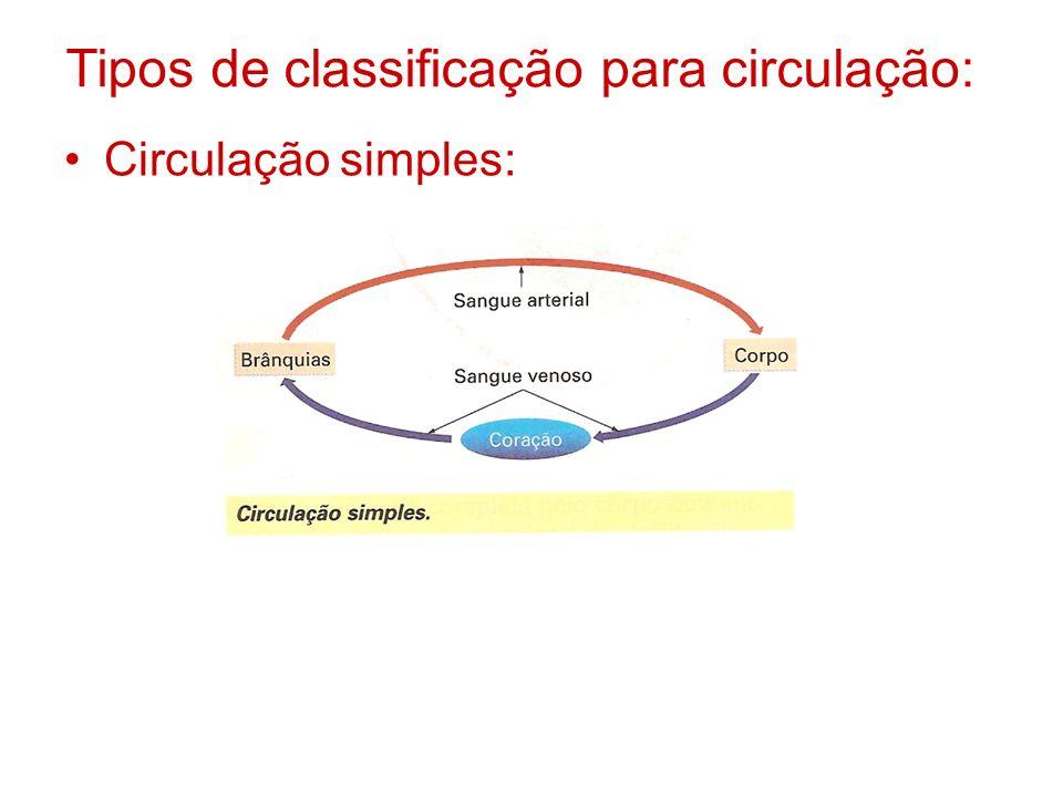Tipos de classificação para circulação: