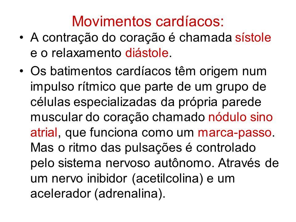 Movimentos cardíacos: