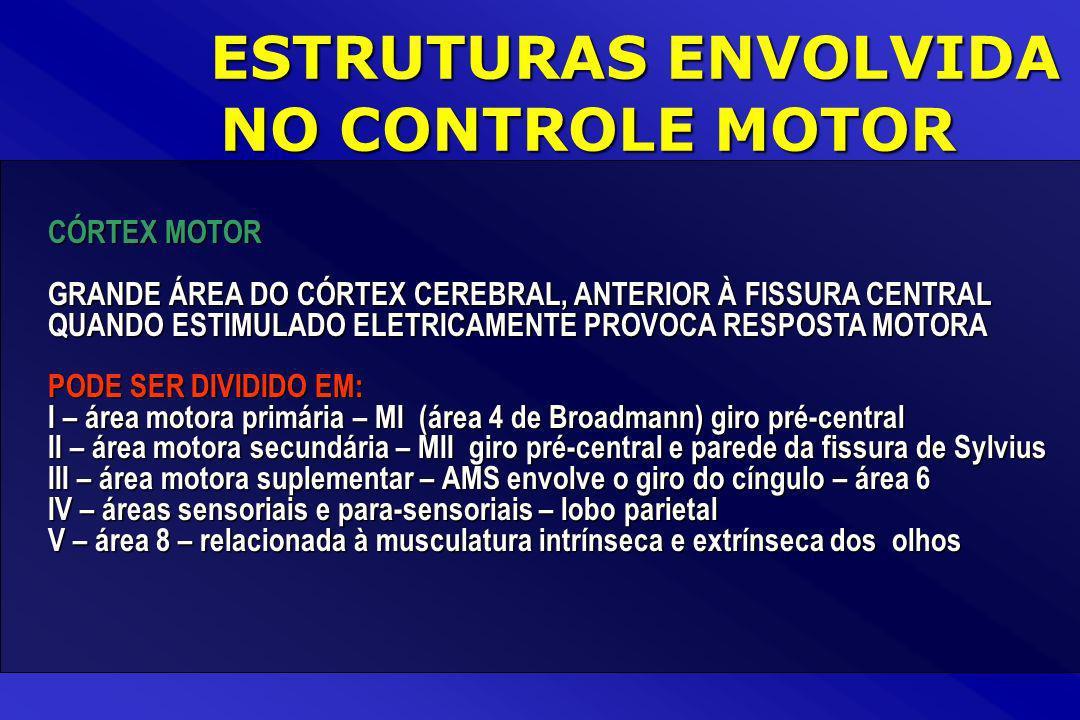 ESTRUTURAS ENVOLVIDA NO CONTROLE MOTOR