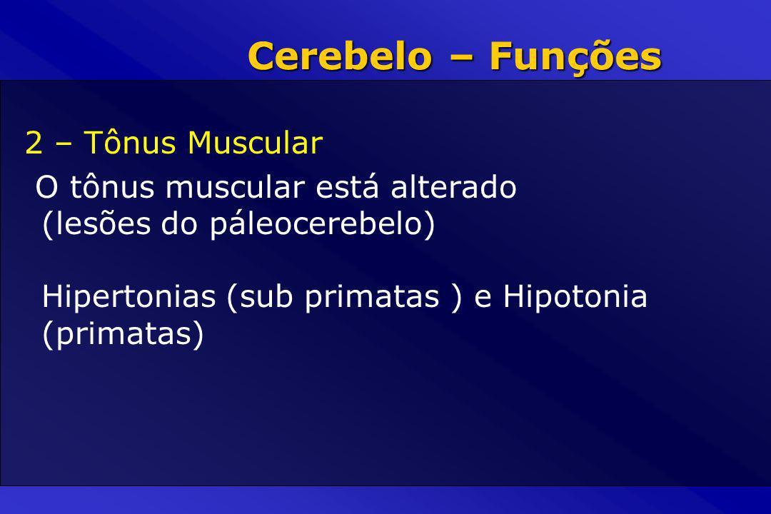 Cerebelo – Funções 2 – Tônus Muscular