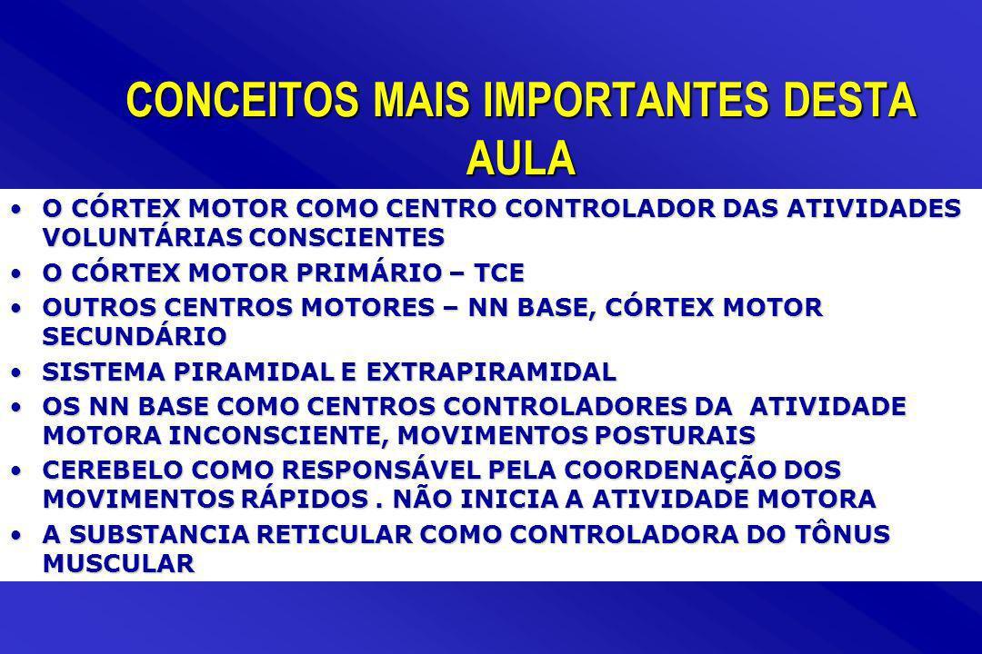 CONCEITOS MAIS IMPORTANTES DESTA AULA