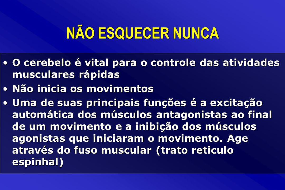 NÃO ESQUECER NUNCA O cerebelo é vital para o controle das atividades musculares rápidas. Não inicia os movimentos.