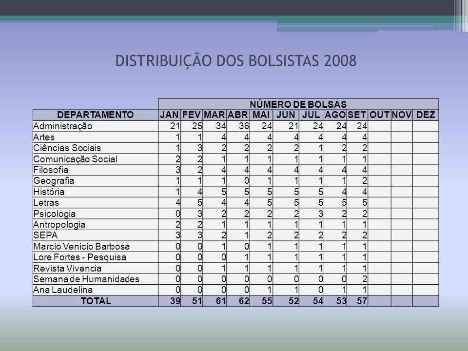 DISTRIBUIÇÃO DOS BOLSISTAS 2008