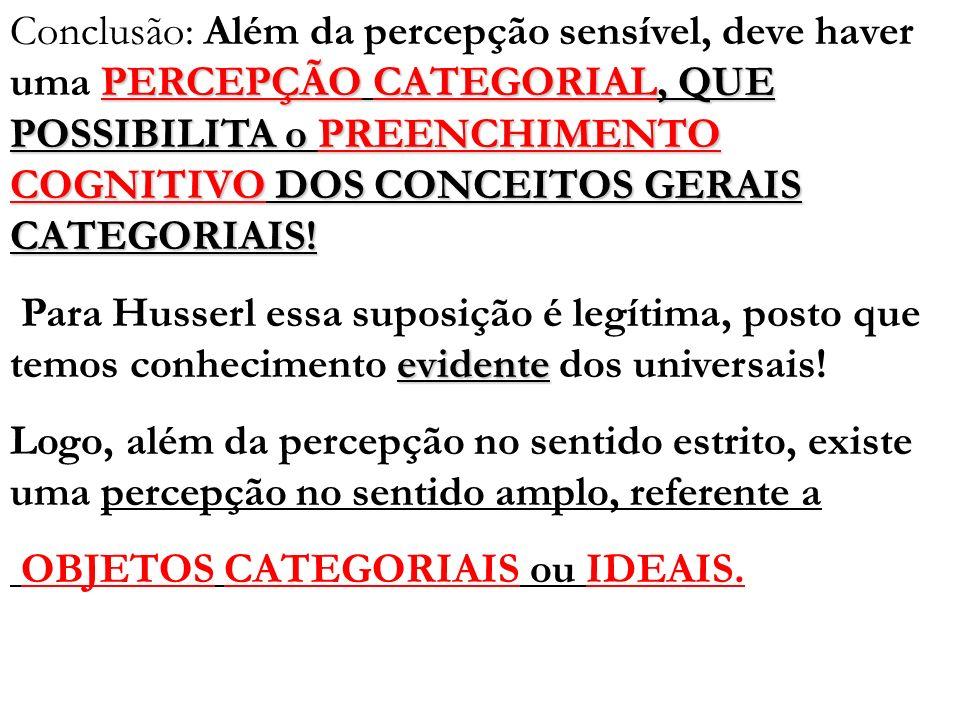 Conclusão: Além da percepção sensível, deve haver uma PERCEPÇÃO CATEGORIAL, QUE POSSIBILITA o PREENCHIMENTO COGNITIVO DOS CONCEITOS GERAIS CATEGORIAIS!
