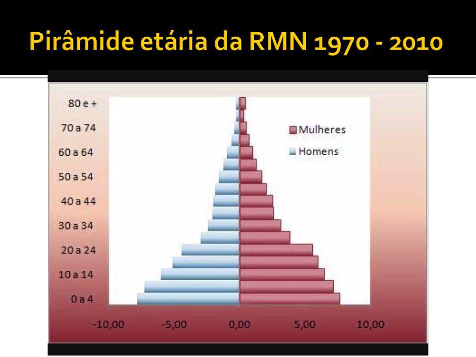 Pirâmide etária da RMN 1970 - 2010