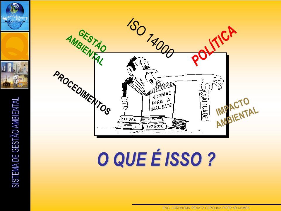O QUE É ISSO ISO 14000 POLÍTICA GESTÃO AMBIENTAL PROCEDIMENTOS