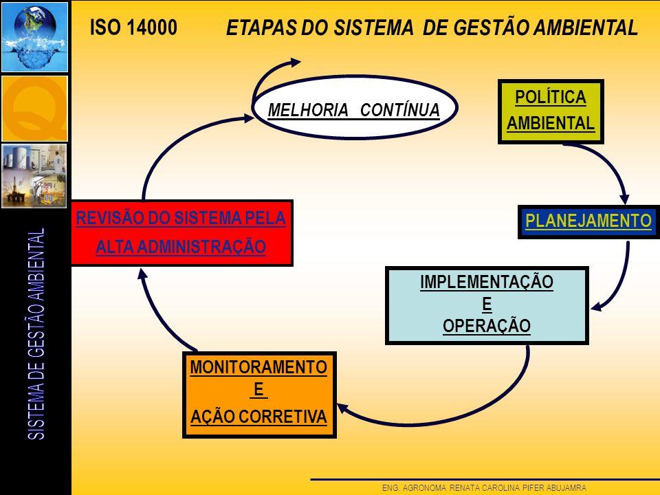 REVISÃO DO SISTEMA PELA