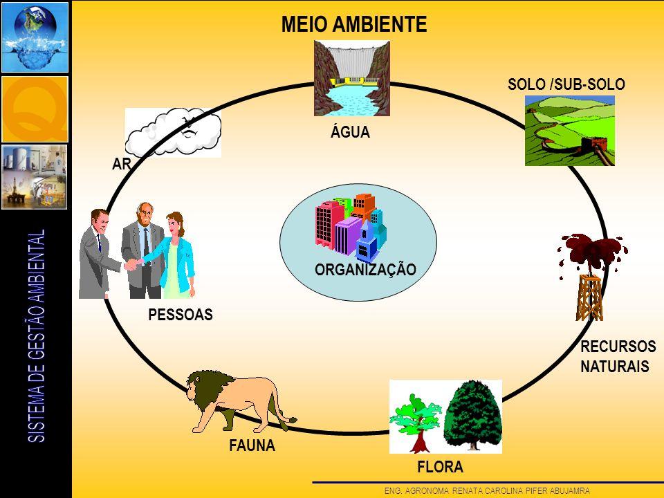 MEIO AMBIENTE SOLO /SUB-SOLO ÁGUA AR ORGANIZAÇÃO PESSOAS RECURSOS
