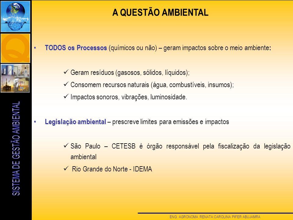 A QUESTÃO AMBIENTAL TODOS os Processos (químicos ou não) – geram impactos sobre o meio ambiente: Geram resíduos (gasosos, sólidos, líquidos);