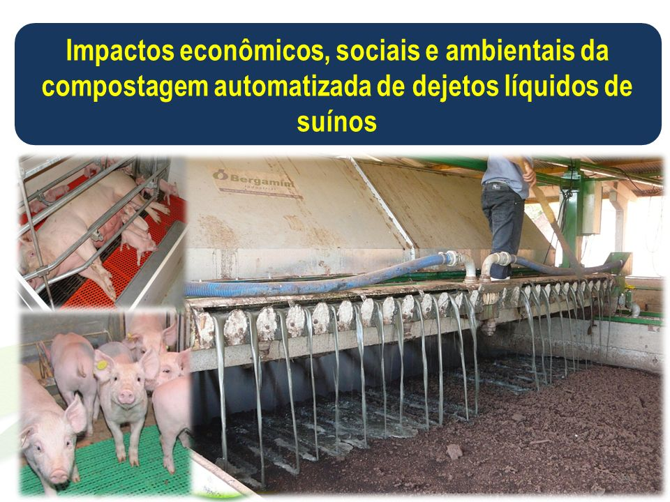 Impactos econômicos, sociais e ambientais da compostagem automatizada de dejetos líquidos de suínos