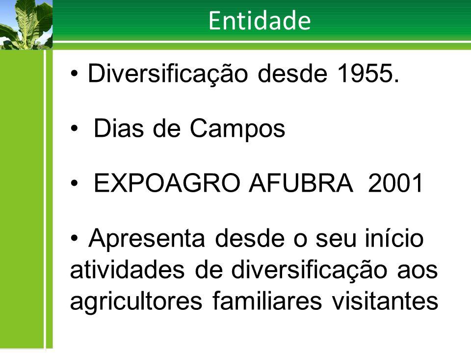 Entidade Diversificação desde 1955. Dias de Campos
