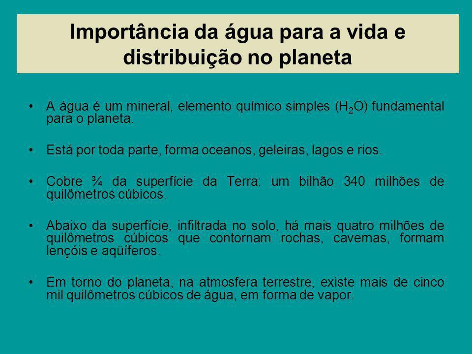 Importância da água para a vida e distribuição no planeta