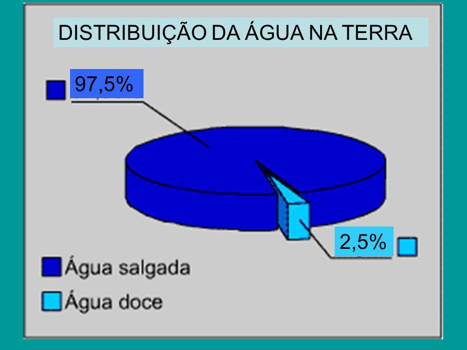 97,5% 2,5% DISTRIBUIÇÃO DA ÁGUA NA TERRA
