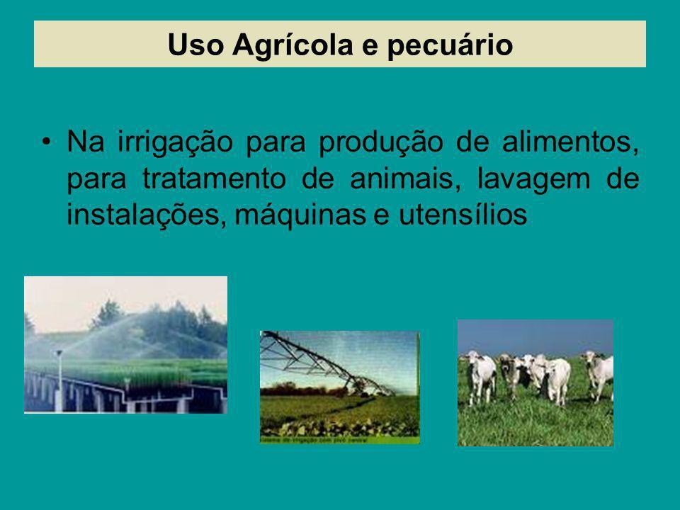 Uso Agrícola e pecuário