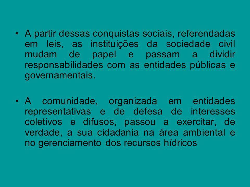 A partir dessas conquistas sociais, referendadas em leis, as instituições da sociedade civil mudam de papel e passam a dividir responsabilidades com as entidades públicas e governamentais.