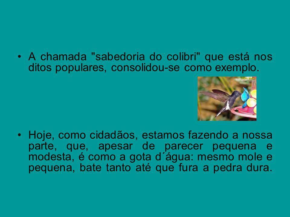 A chamada sabedoria do colibri que está nos ditos populares, consolidou-se como exemplo.