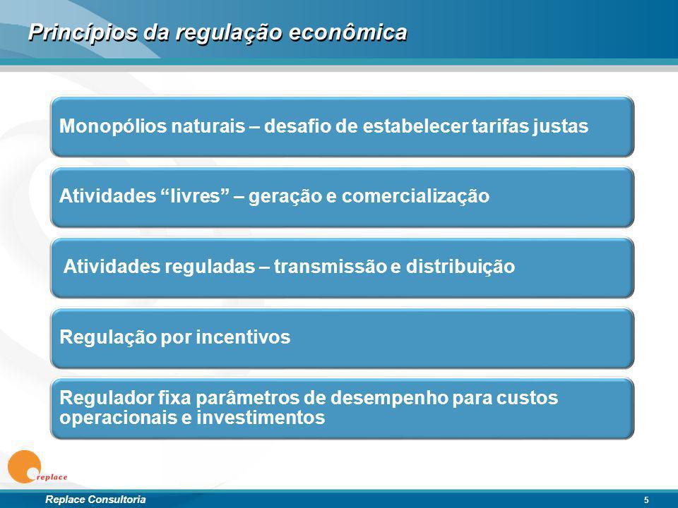 Princípios da regulação econômica