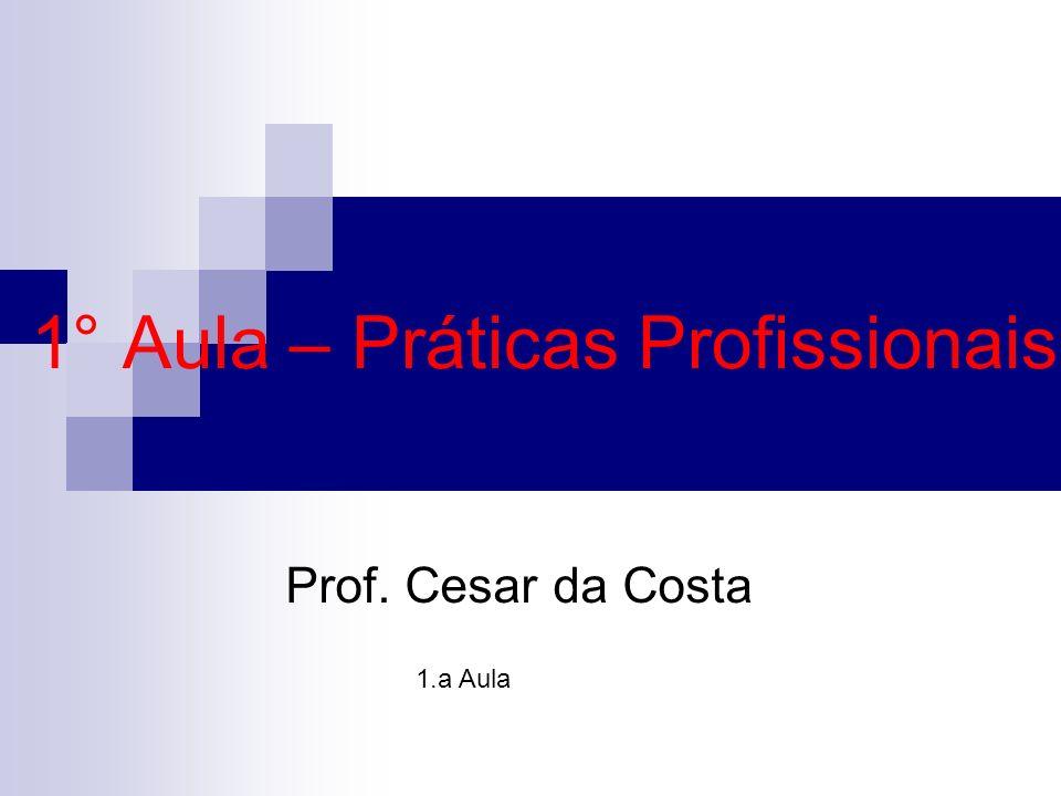 1° Aula – Práticas Profissionais