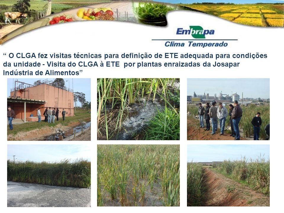 O CLGA fez visitas técnicas para definição de ETE adequada para condições da unidade - Visita do CLGA à ETE por plantas enraizadas da Josapar Indústria de Alimentos